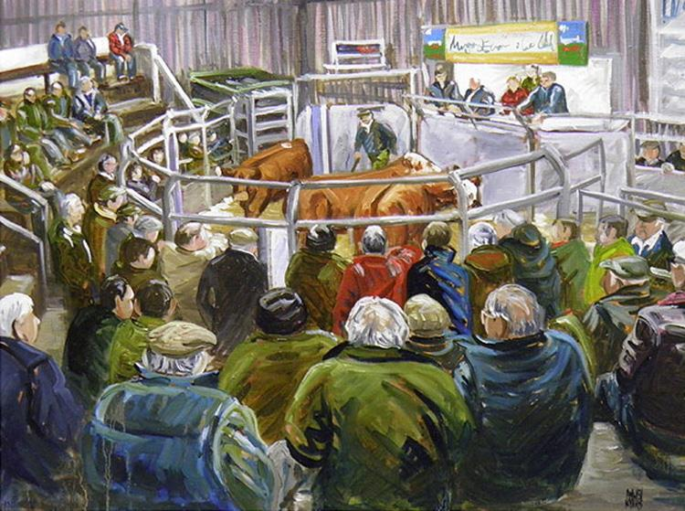 At the sale no.4 Gaerwen cattle
